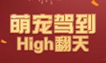 【新春好礼】萌宠驾到High翻全场